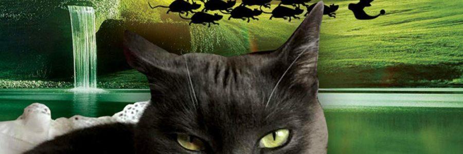 Melisanda Massei Autunnali, Decameron felino