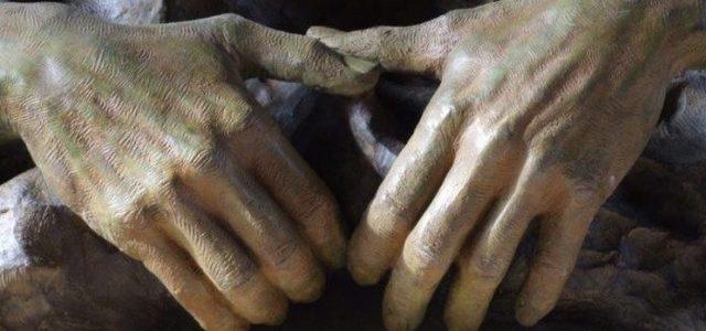 Sono loro queste mani